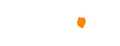 Americanet Logo